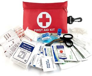 Aquarius CiCi Emergency Survival Kit