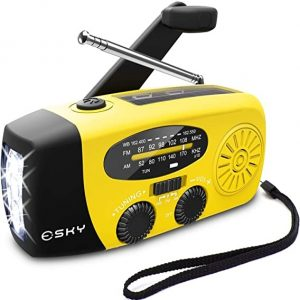 Esky Radio with Flashlight